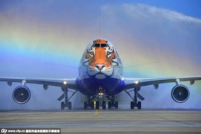Boeing Tigre - Rusia (1)