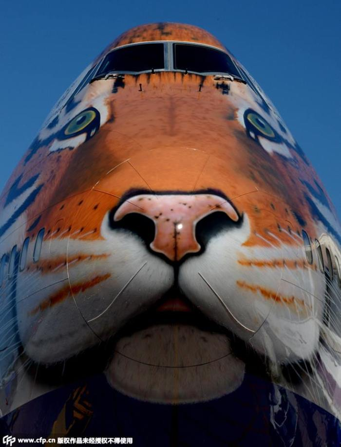 Boeing Tigre - Rusia (6)
