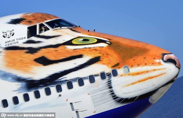 Boeing Tigre - Rusia (8)