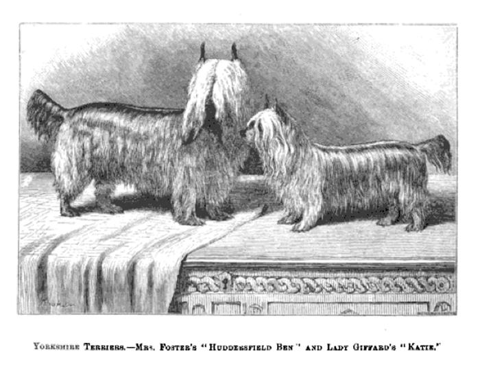 «Huddersfield Ben» con «Katie» alrededor de 1870